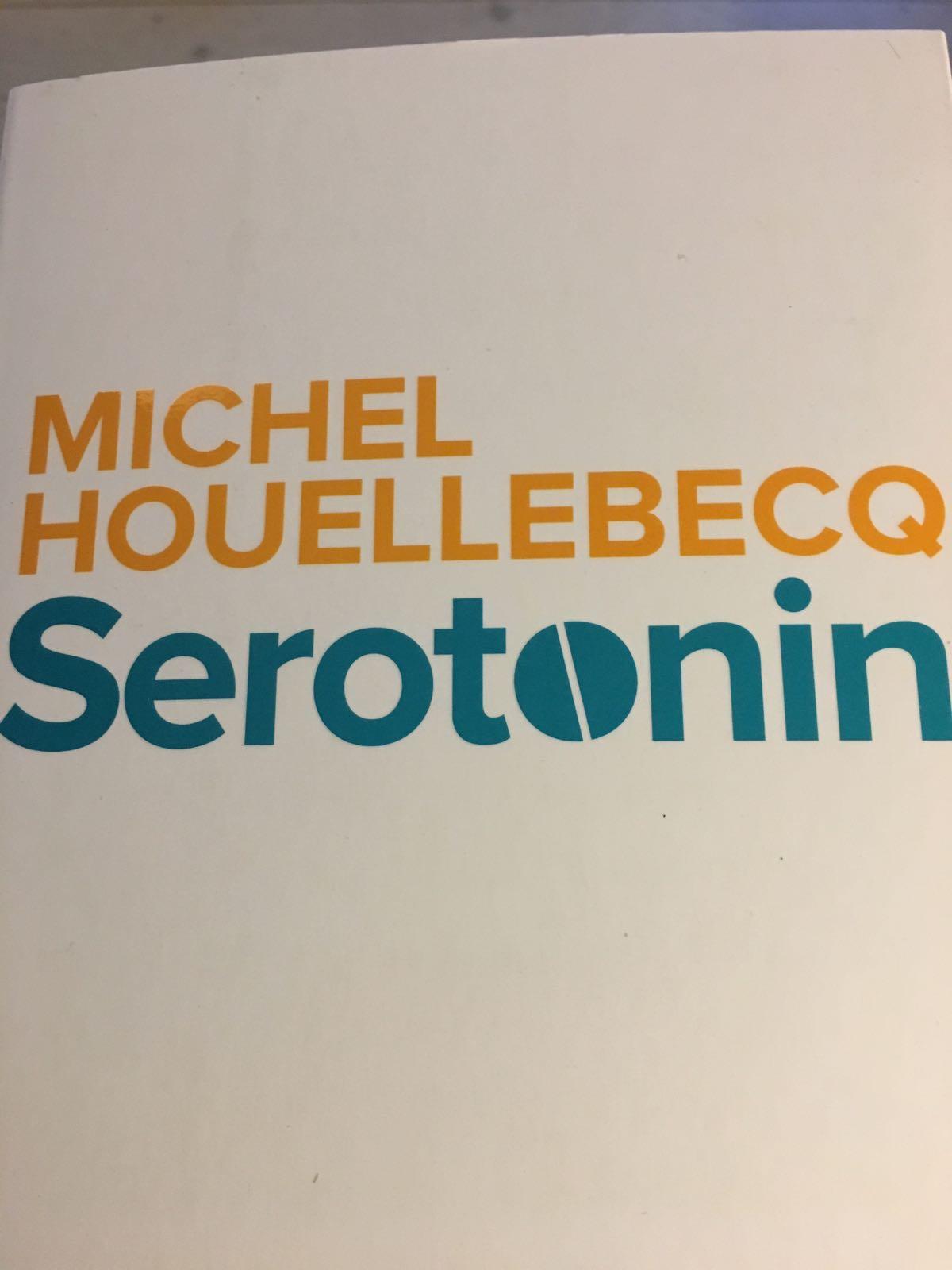 Serotonin af Michelle Houllebeck