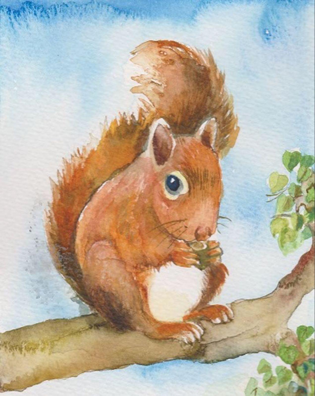 'Red Squirrel' Furzedown Gallery Mini Card
