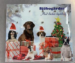 Hund Advents Kalender