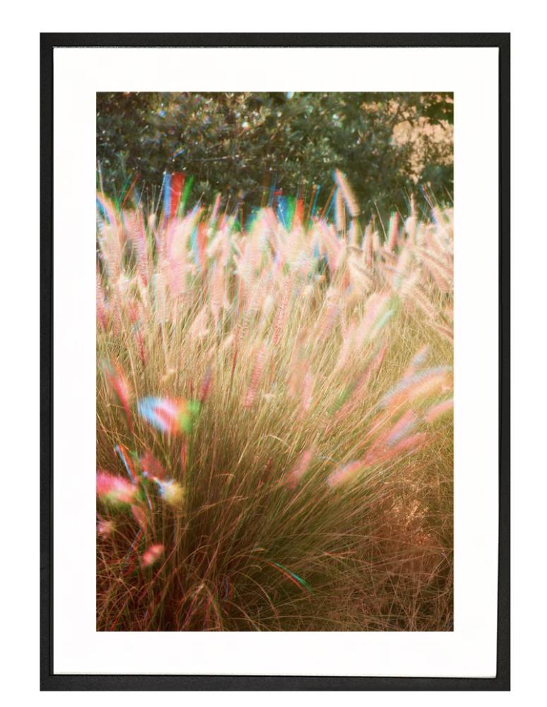 Moreno print Malibu Wind 50x70