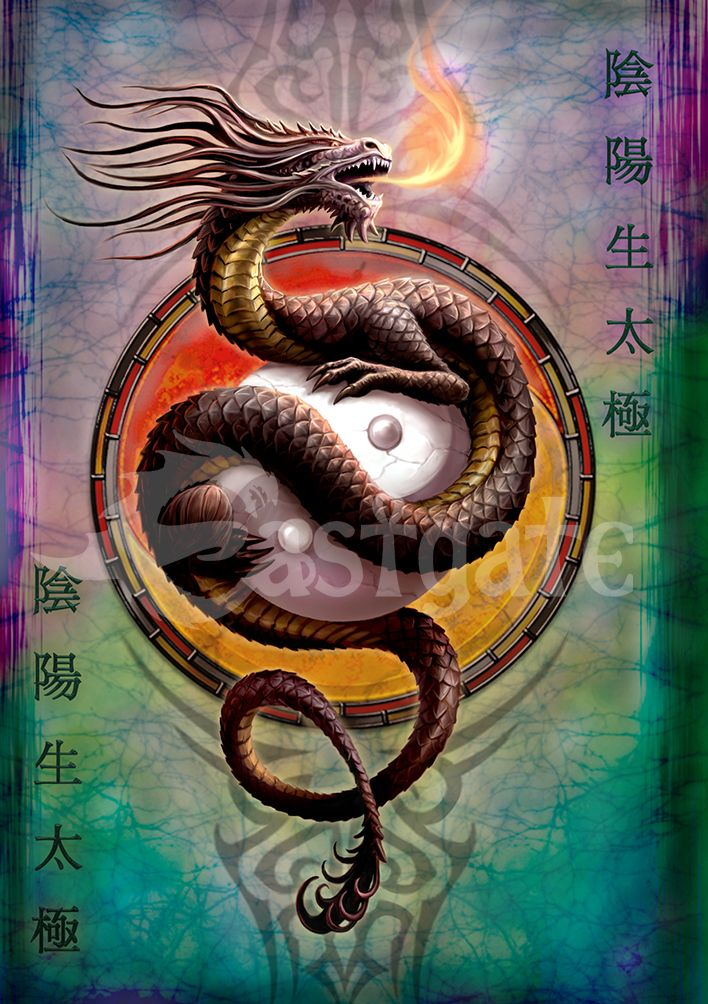 Yin Yang Protector Greetings Card