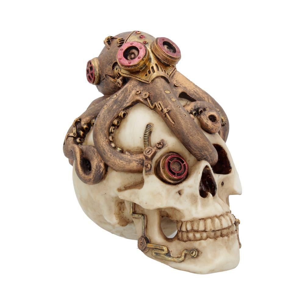 Octo Craniotomy Skull