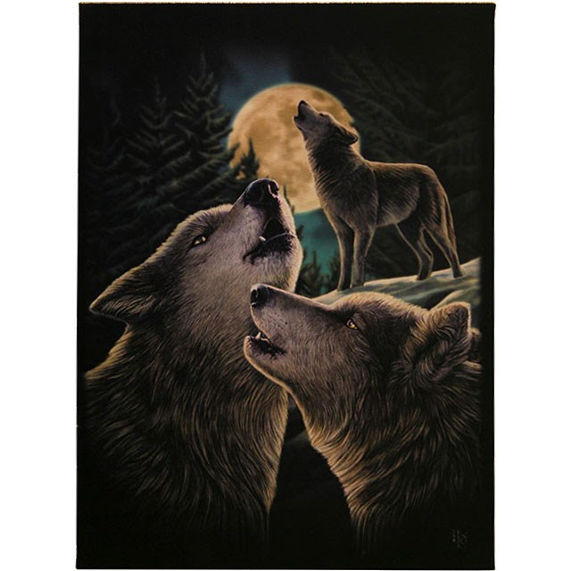 Wolf Song Small Canvas (Lisa Parker)