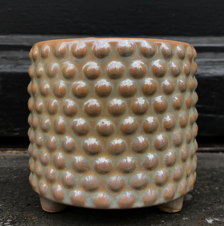 Pot Pearl