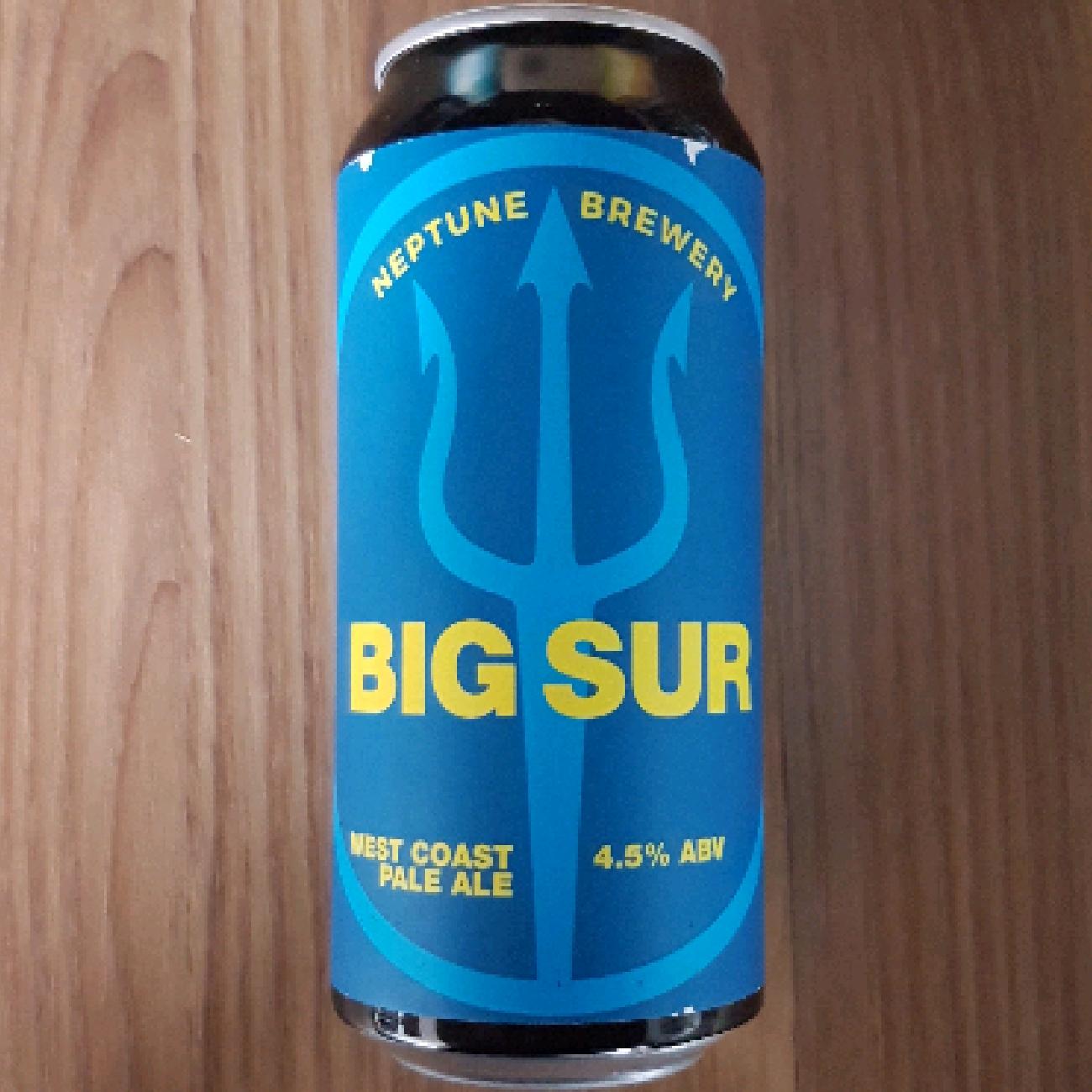 Neptune Big Sur