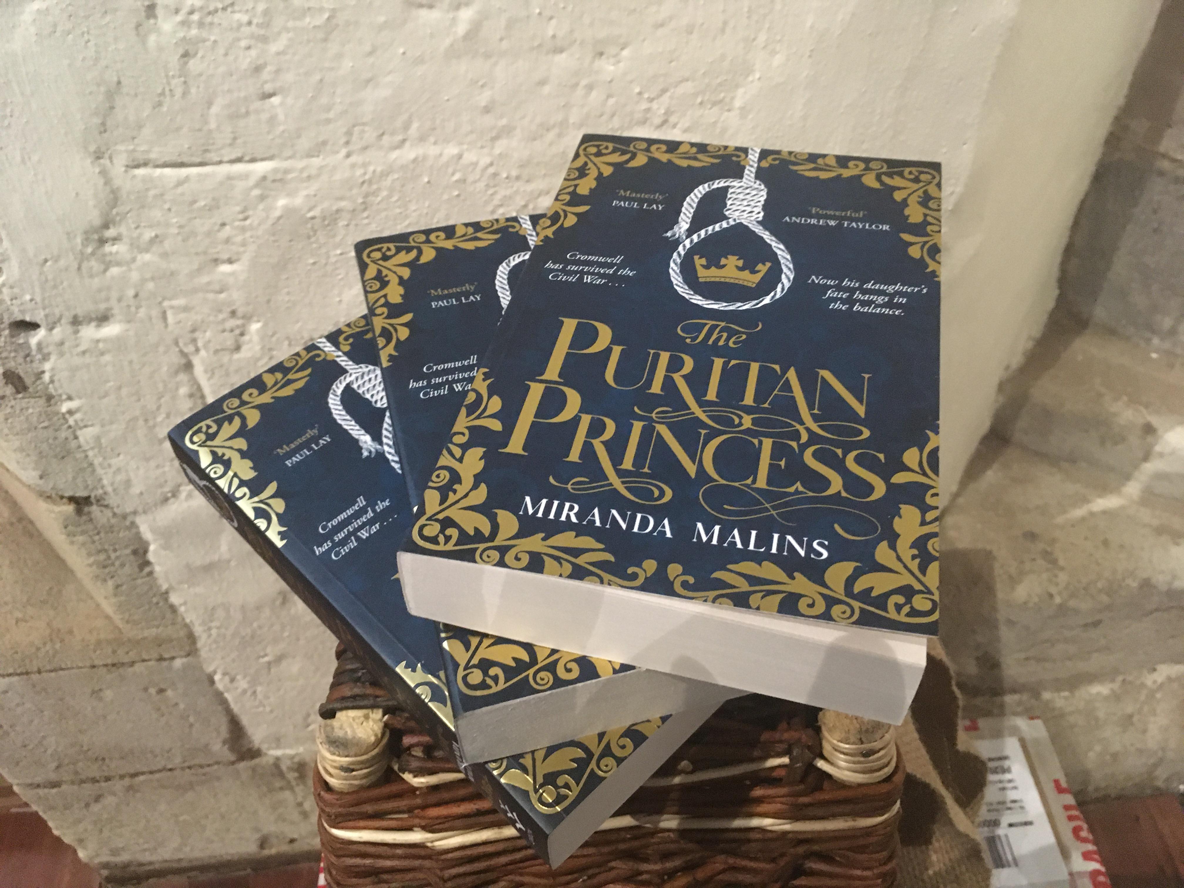 Book: The Puritan Princess (Paperback) (SKU: BK-FI-003)