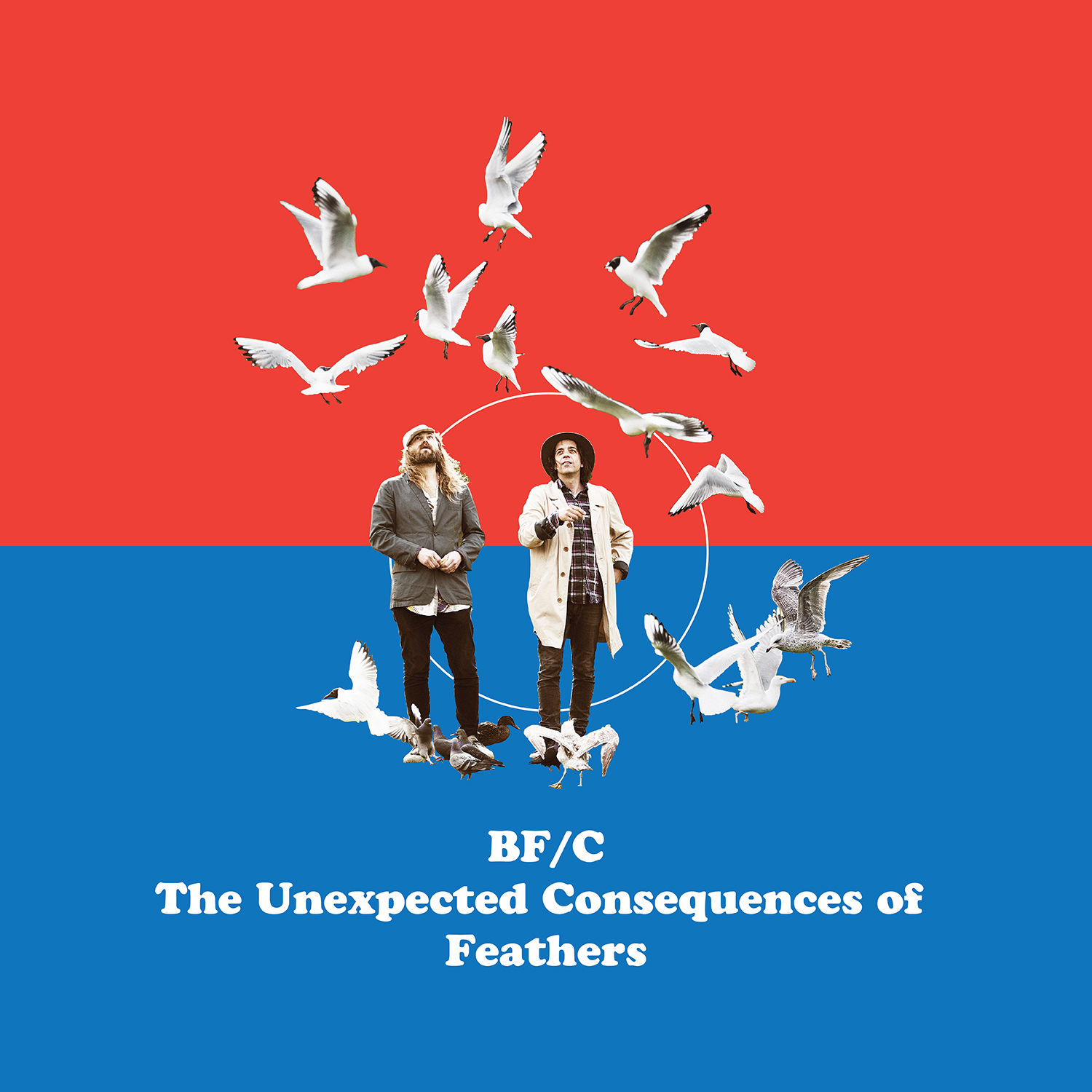 "Vinyl - BF/C ""The Unexpected Consequences of Feathers"""