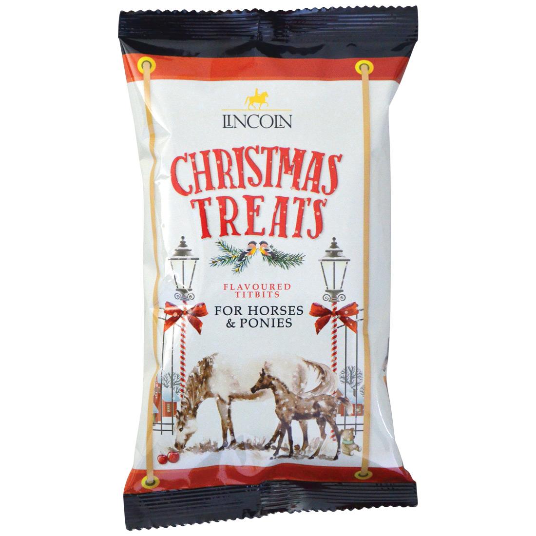 Lincoln Christmas Horse Treats