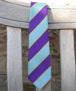 Equetech PC Junior Striped Tie
