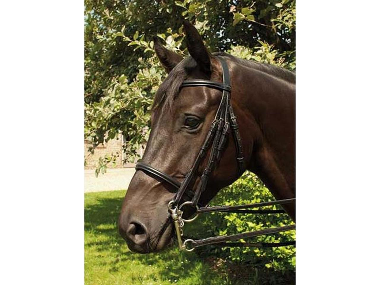Heritage Leather Double Bridle Black