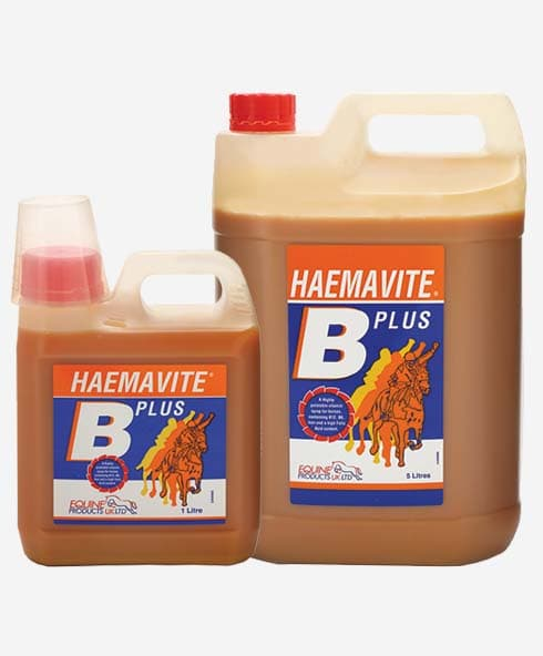Equine Products LTD Haemavite B Plus Nutirion Tonic & Recuperation Supplements
