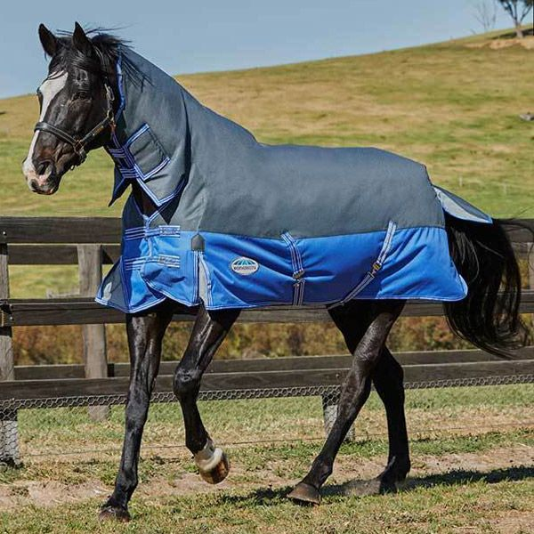 Weatherbeeta ComFiTech Premier Thinsulate Combo 350g turnout  Rug