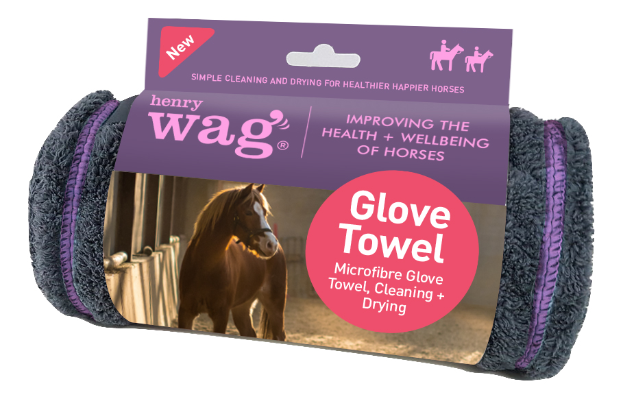 Henry Wag Equine Noodle Grooming Glove Towel