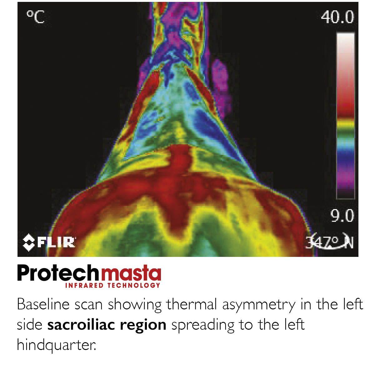 Masta Protech Infrared Rug (No Neck)