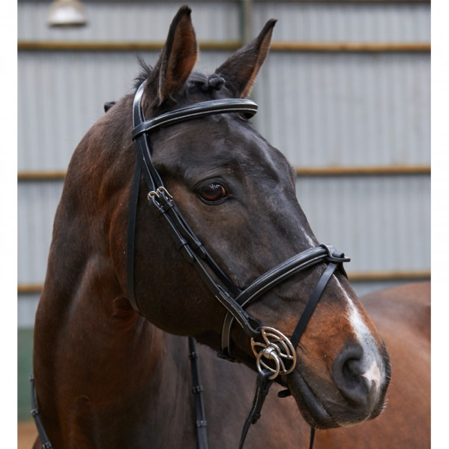 John Whitaker Eastwood Raised Flash Bridle With Reins