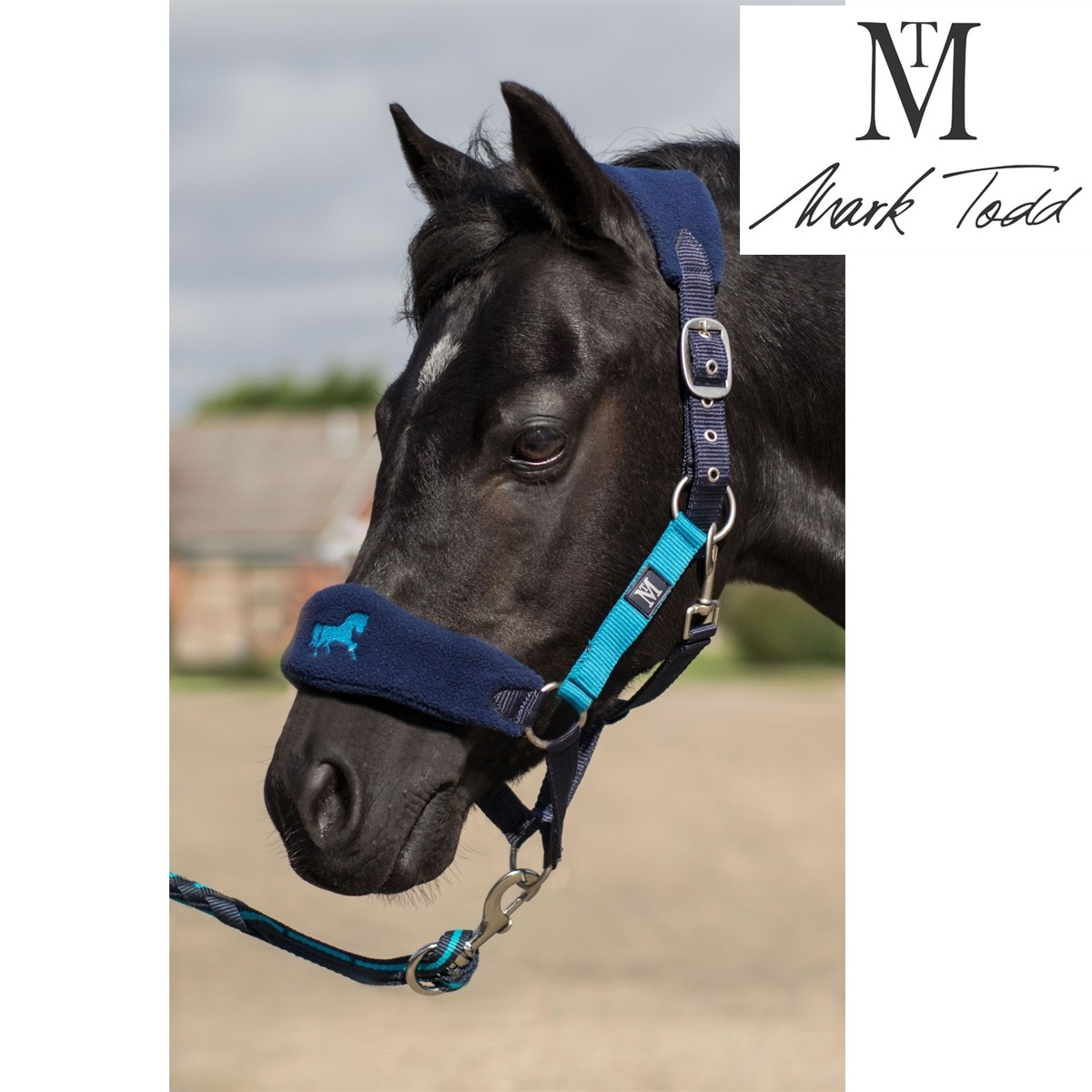 Mark Todd Collection Headcollar