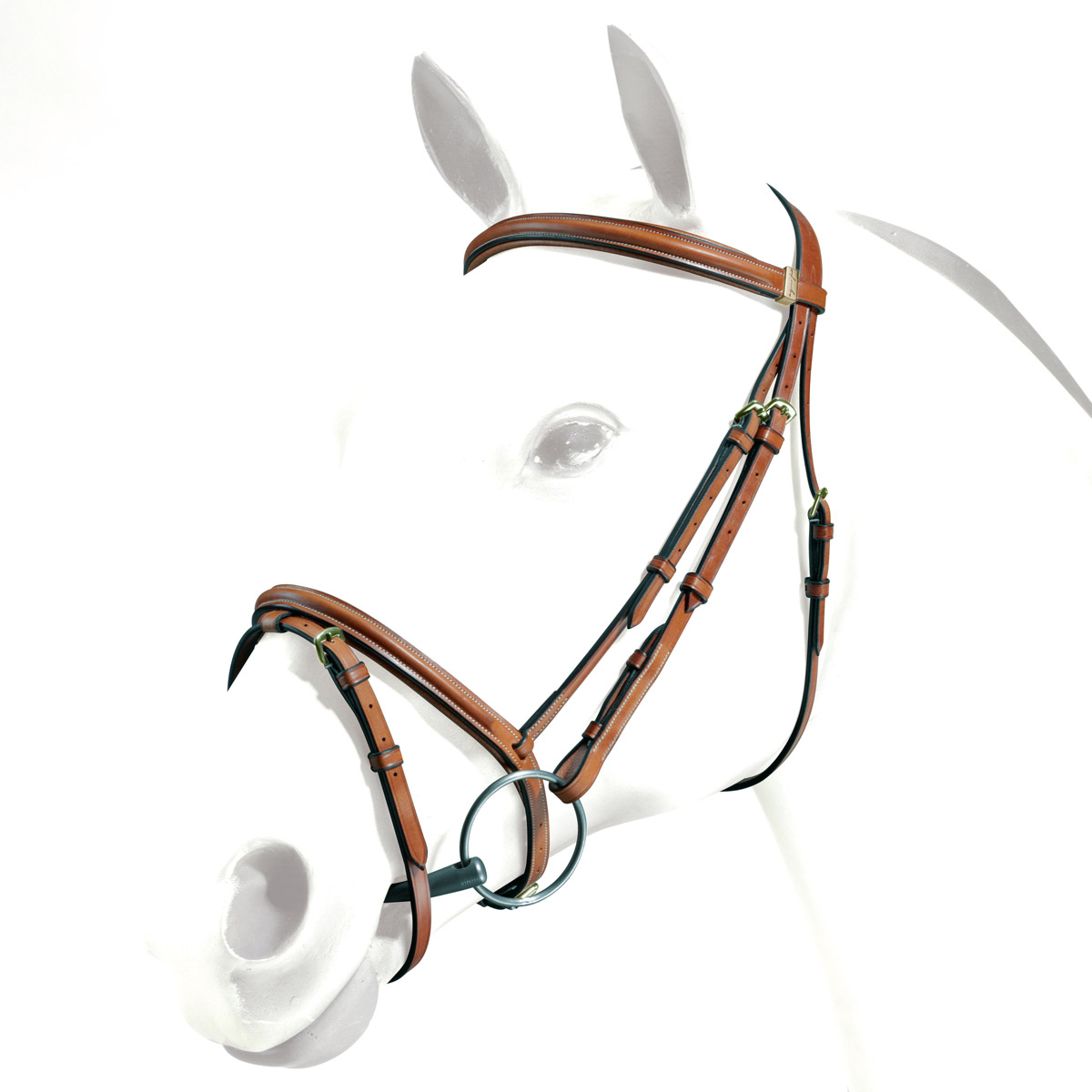 Equipe Plain Raised Padded Bridle
