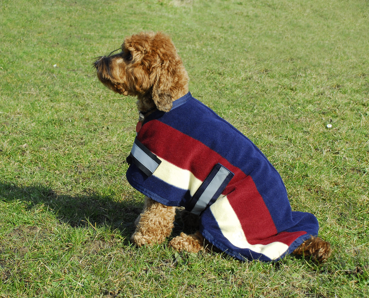 Rhinegold Fleece Stripe Dog Coat