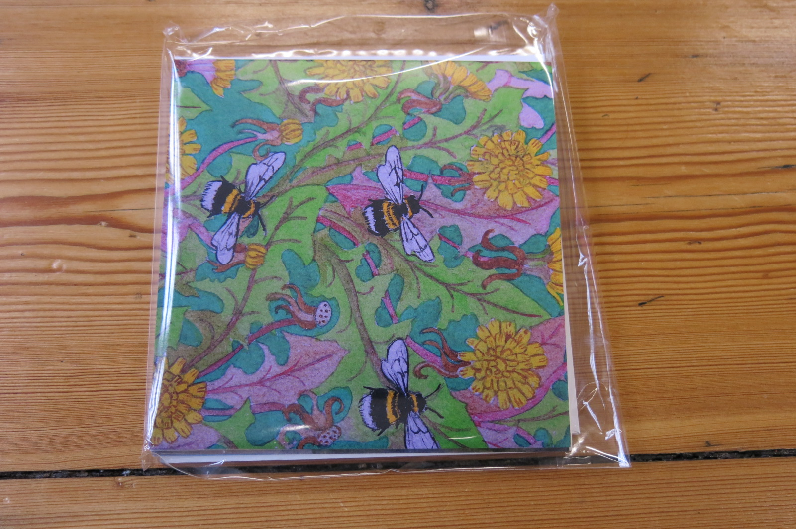 WATERCOLOUR BIRDS AND BEES PACK - 5 CARDS