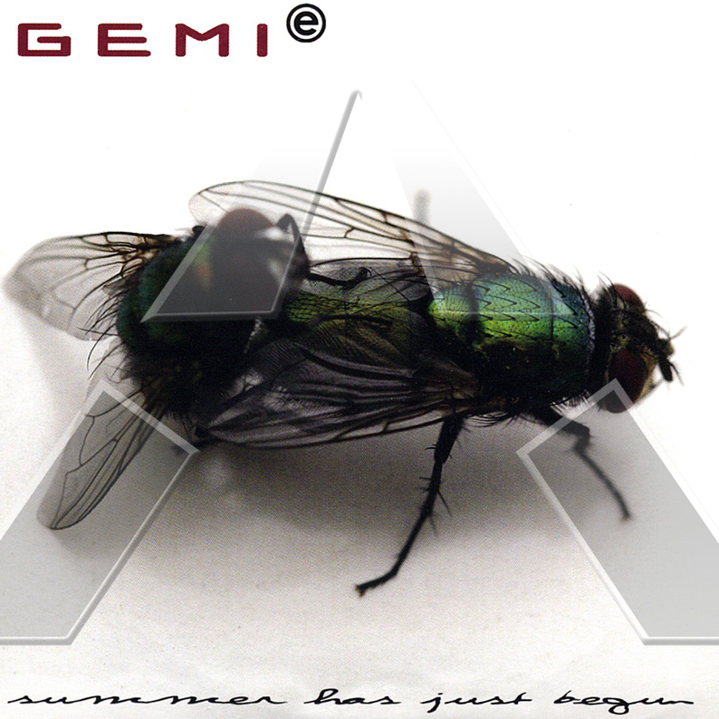 Gemie ★ Summer Has Just Begun (cd single EU BLCD006)