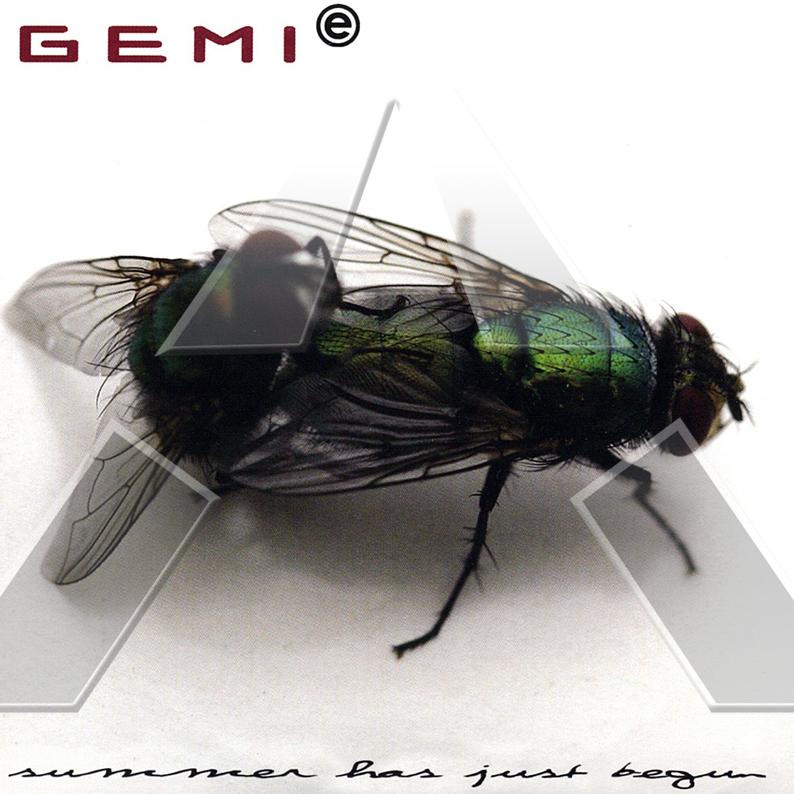 Gemie ★ Summer Has Just Begun (cd single)