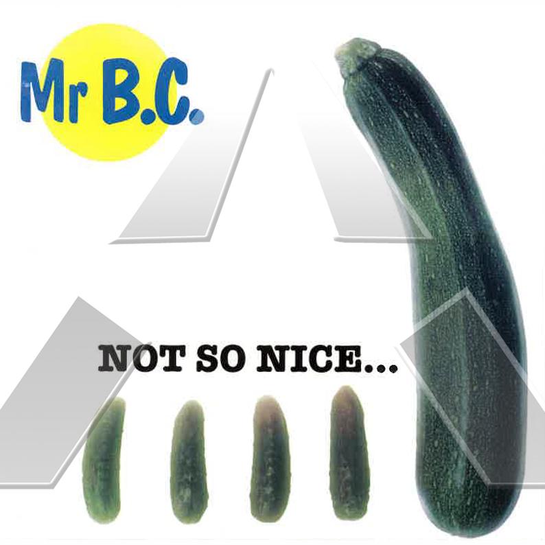 Mistah B.C. ★ Not so Nice (cd maxi single EU)