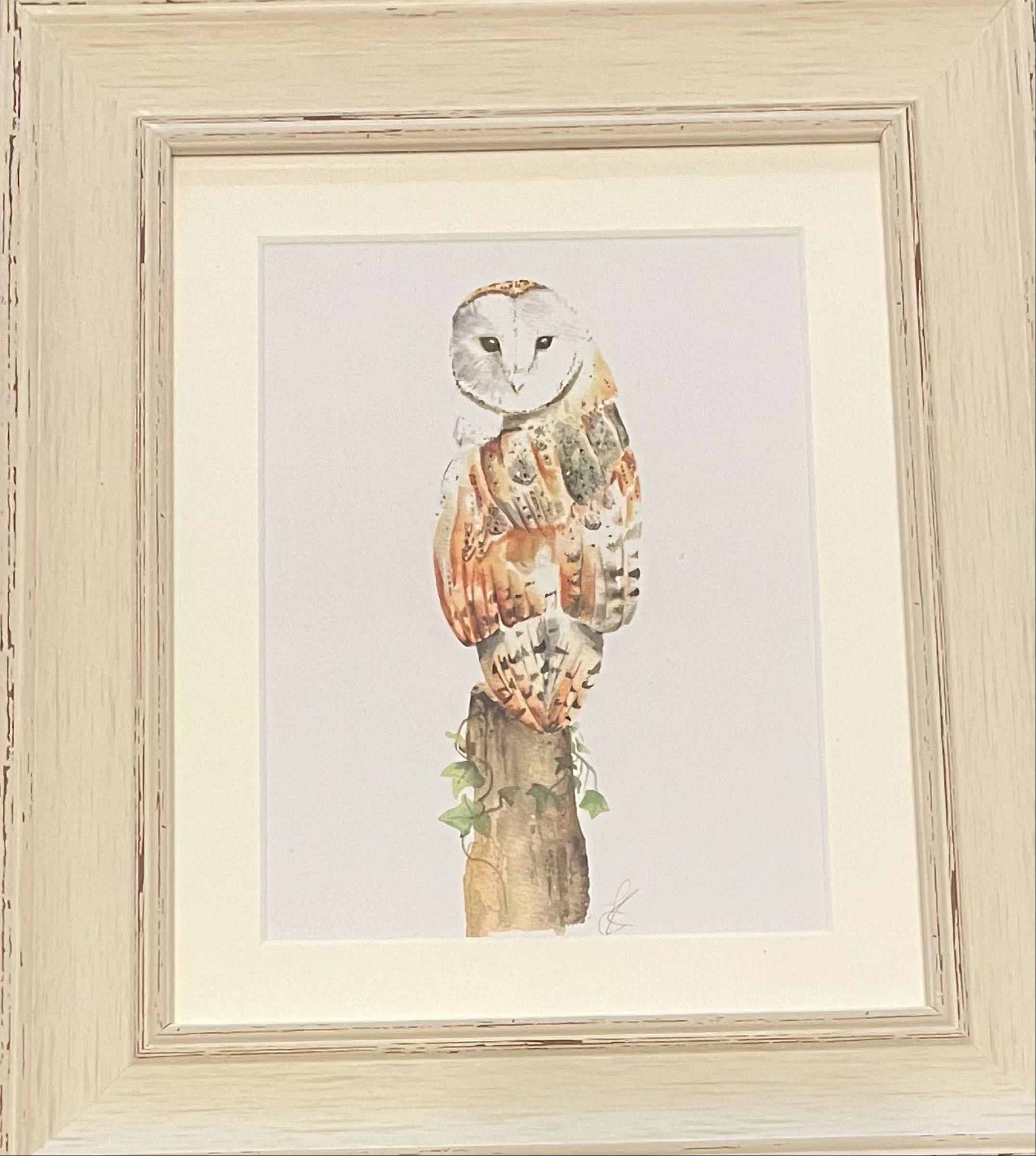 Barn Owl Framed Print by Sarah Reilly  28cmx33cm