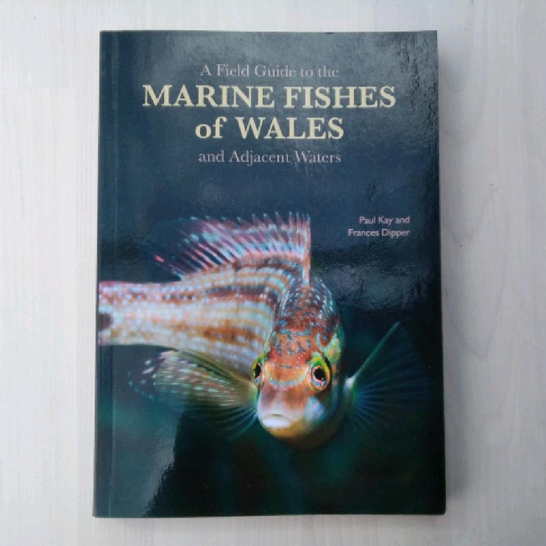 Marine fish of Wales book