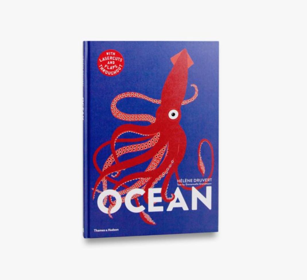Ocean Hardback Book