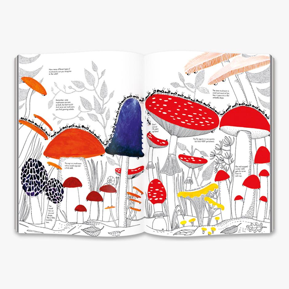 1001 Ants Hardback Book