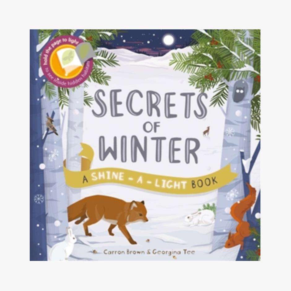 Secrets of Winter Torch Paperback Book