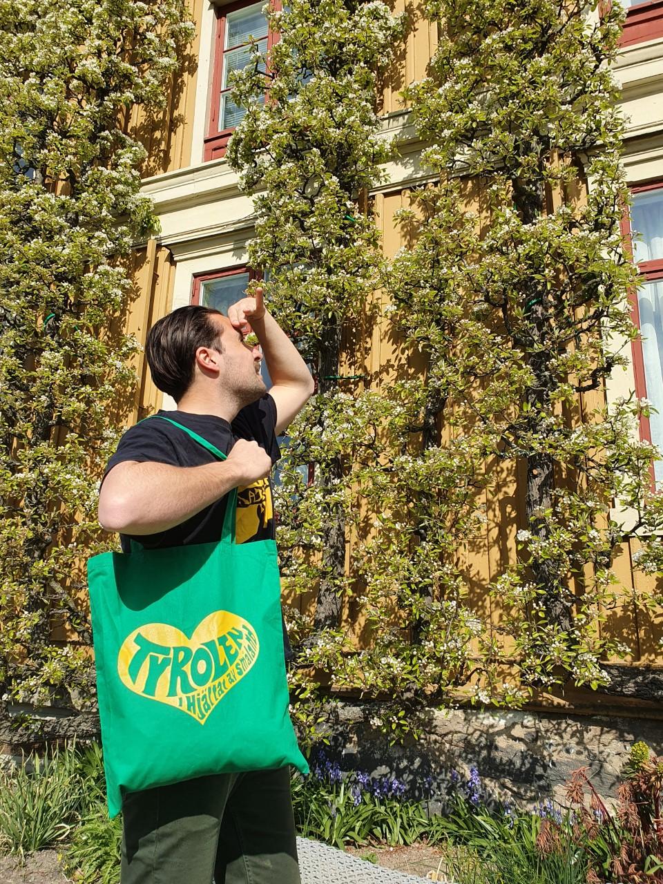 Tyrolen Tygkasse grön med gult tryck