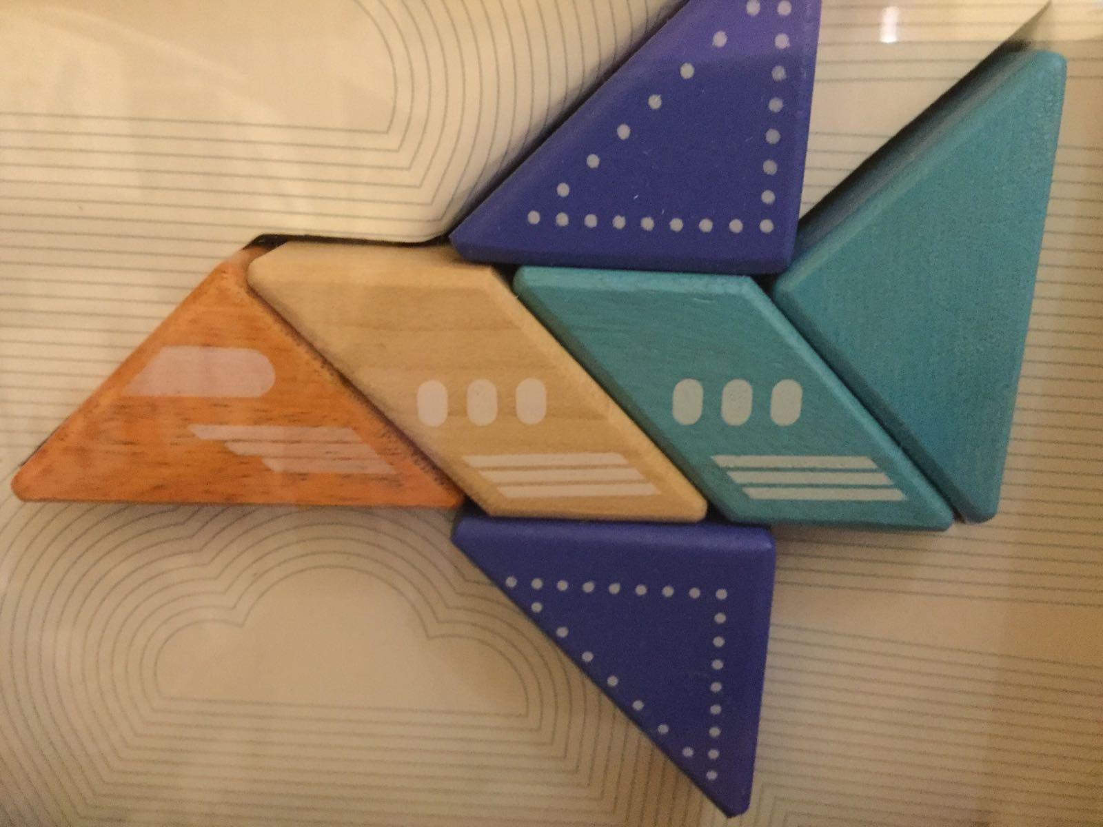 Tegu - Travel pals - Jet Plane
