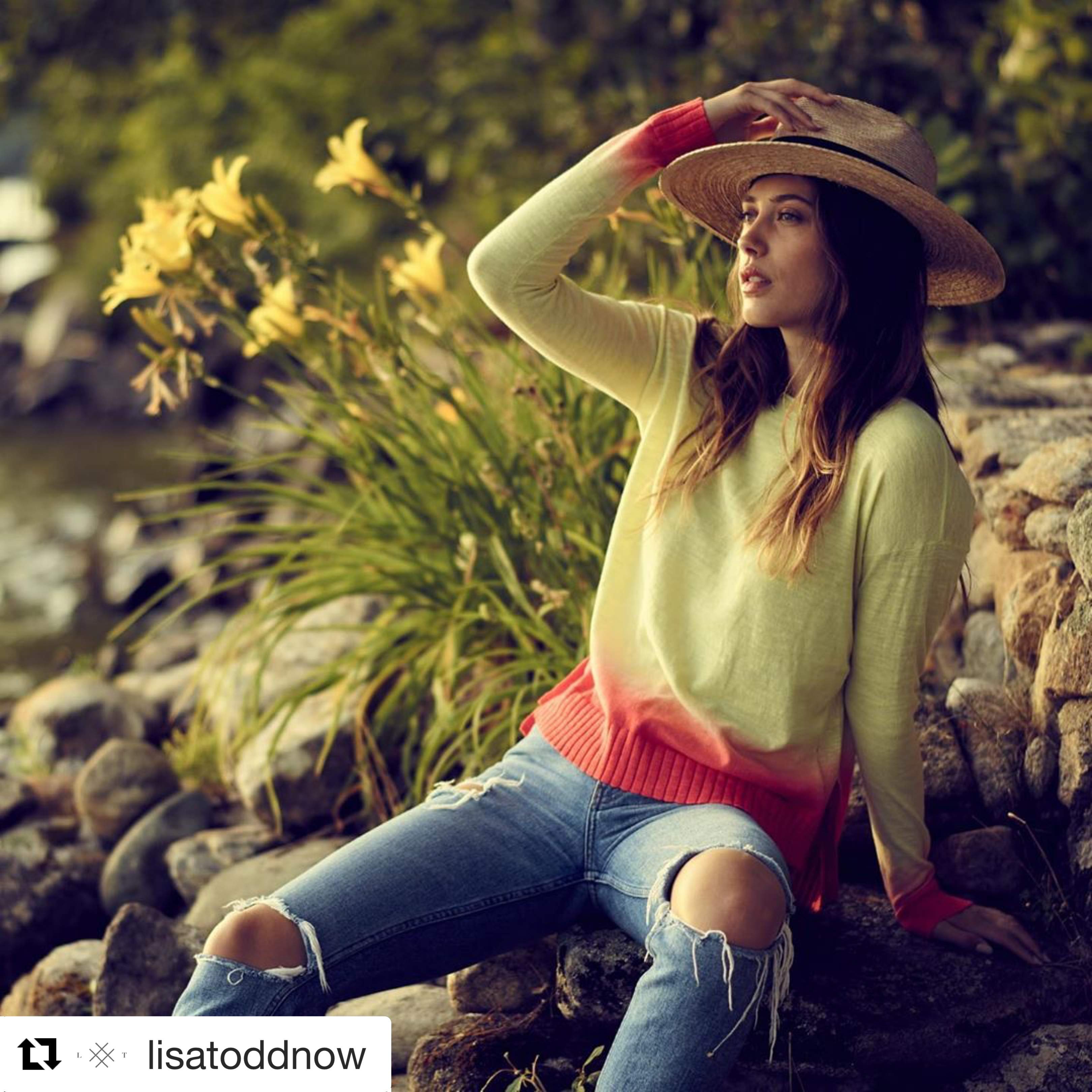 Lisa Todd Sweater - Dipped Lemongrass