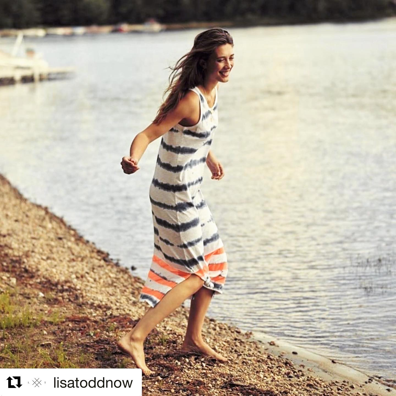 Lisa Todd Dress - Meshed Up