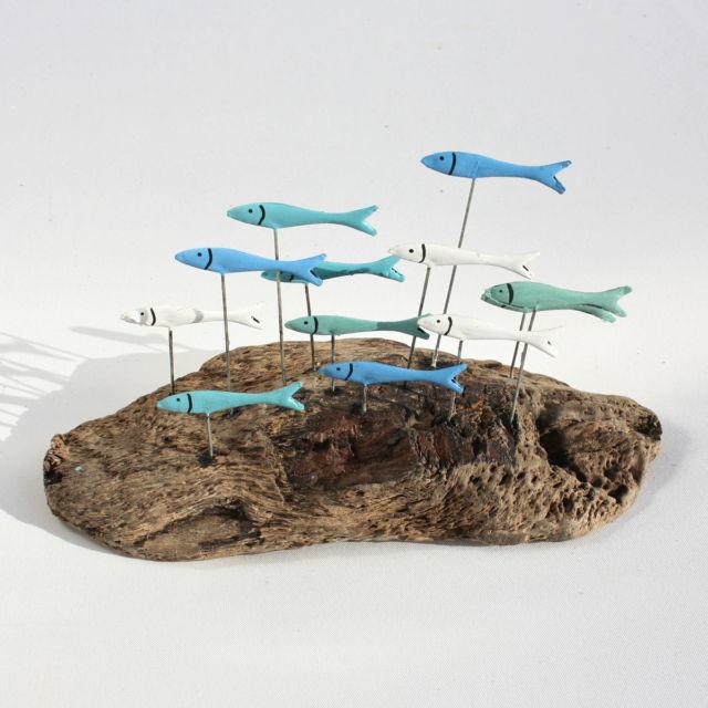 School of fish driftwood