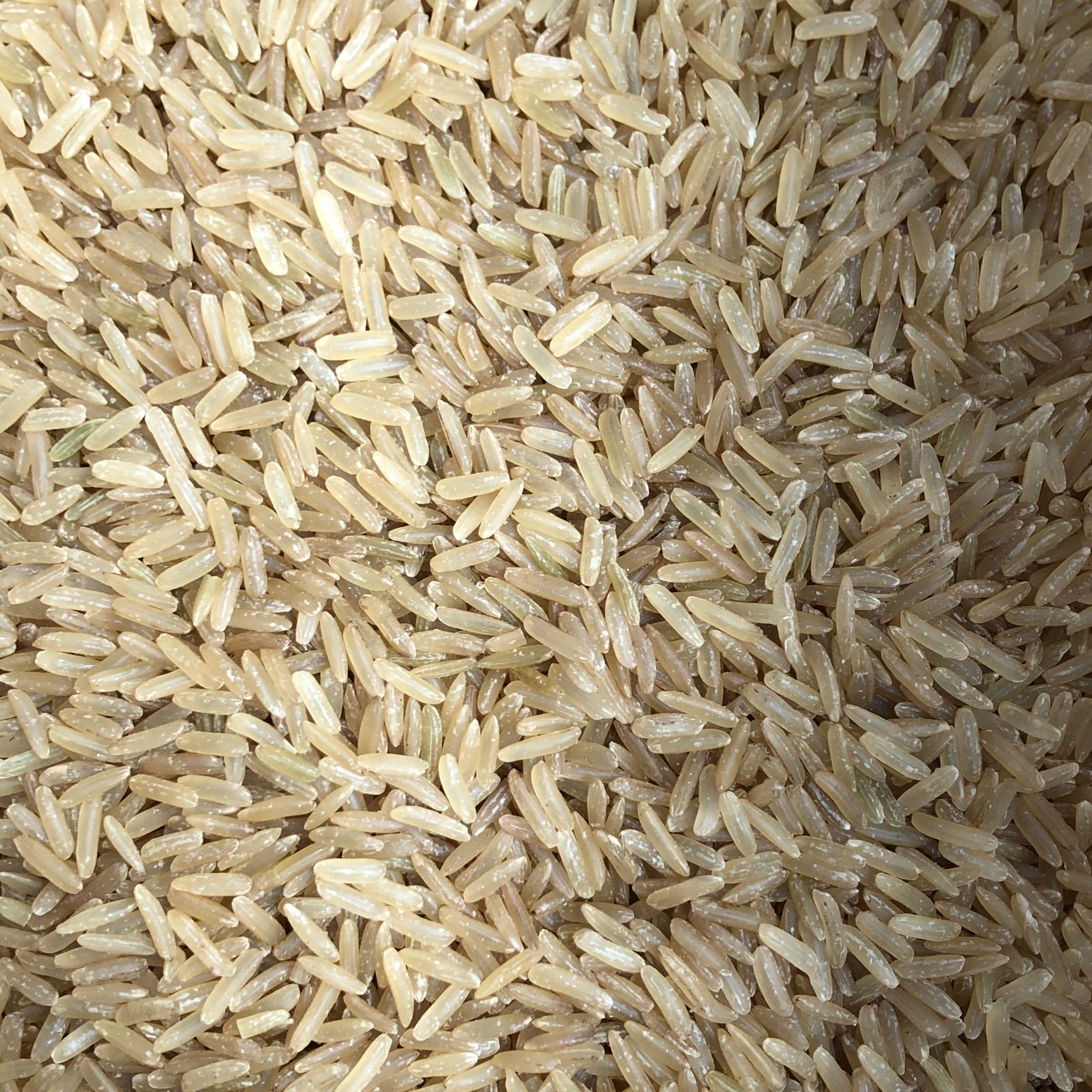 Long Grain Brown Rice (500g)