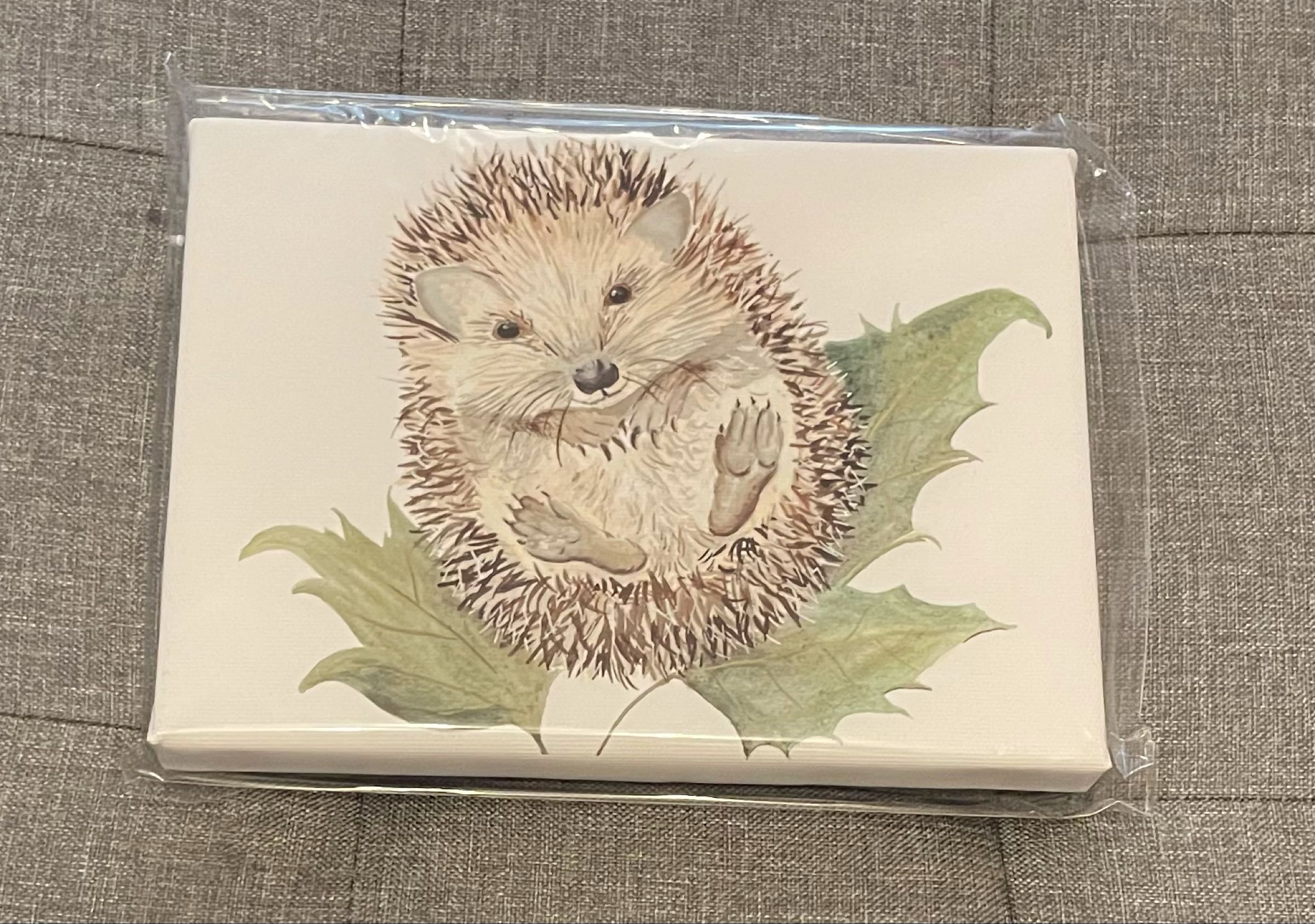 Mr Prickles Hedgehog Canvas by Sarah Reilly 15cmx21cm