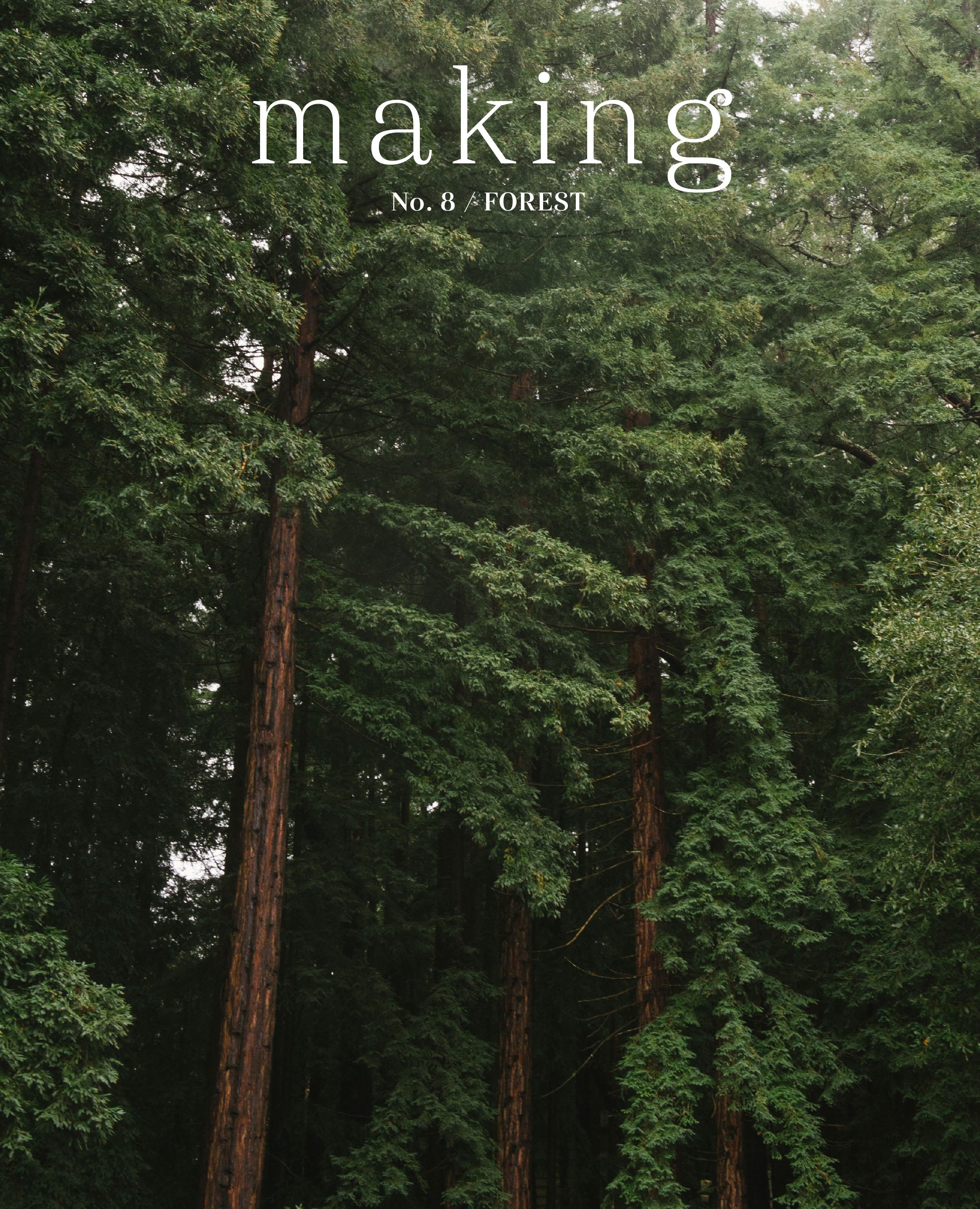 Making - No. 8 - Forest