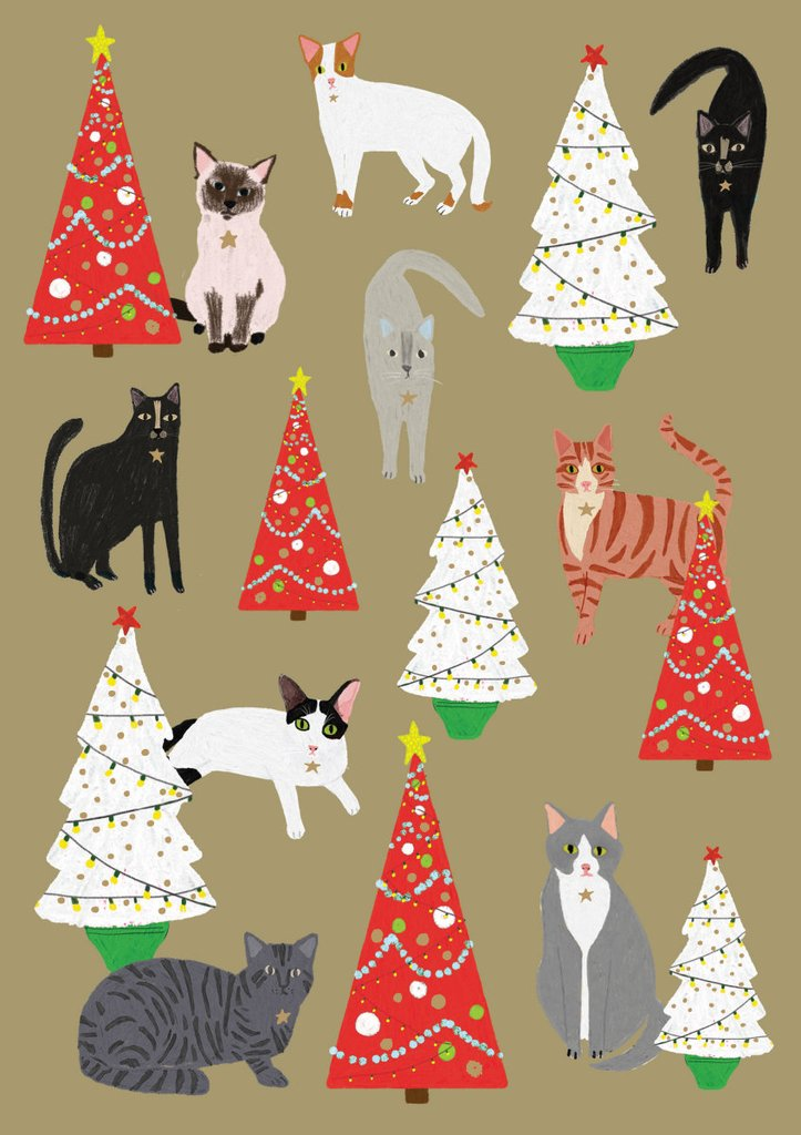 Wrapping Paper - Christmas - Click and Collect Only