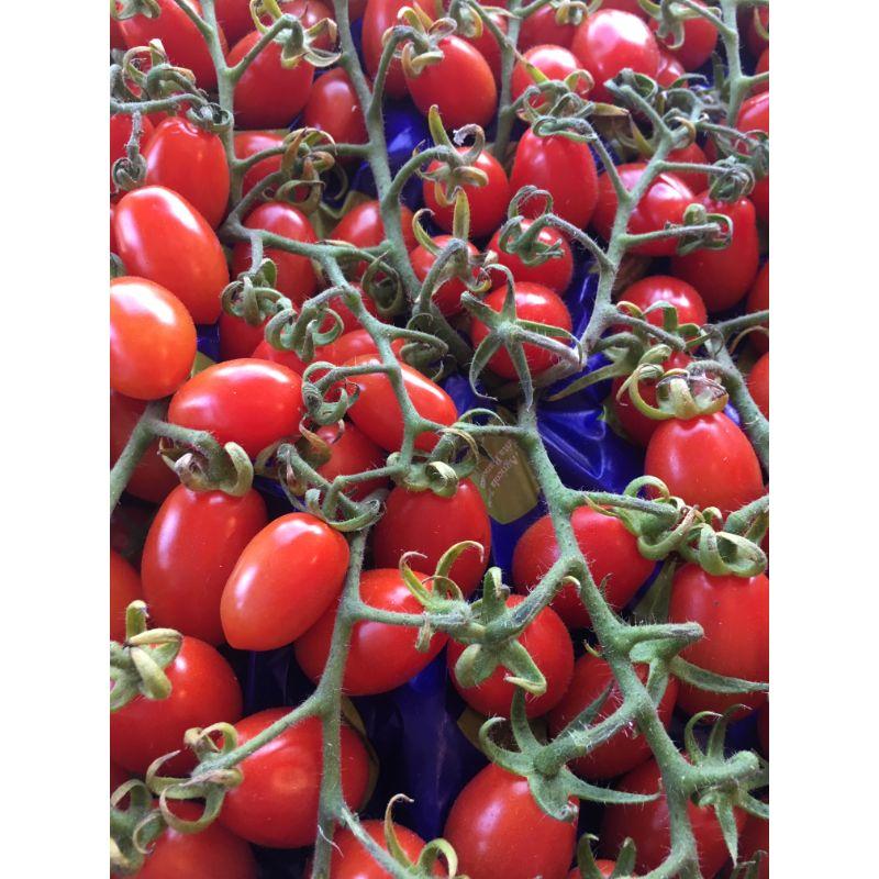 Tomato Datterino Vine 200g