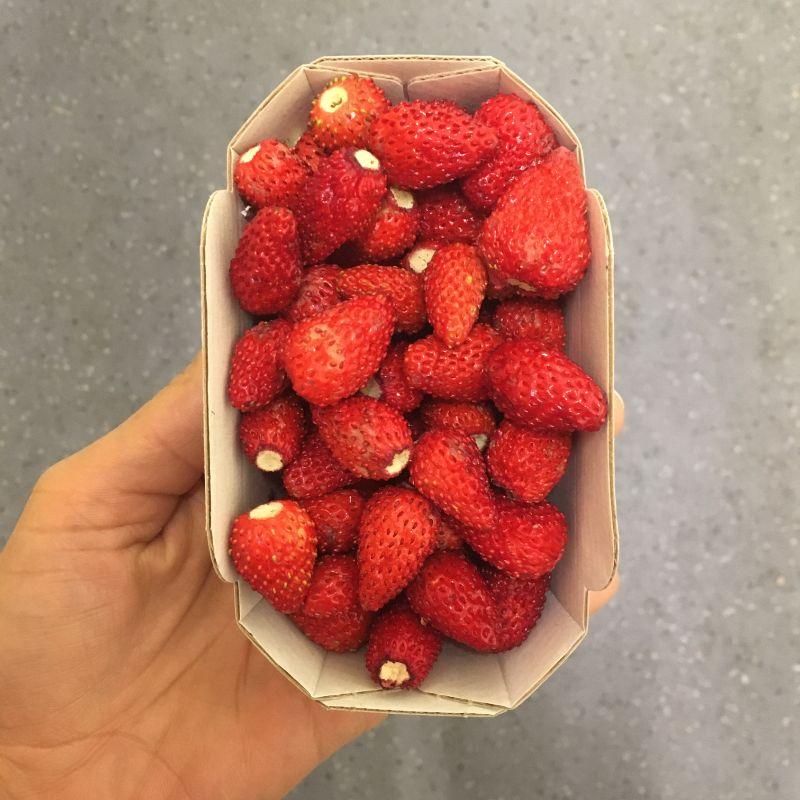 Strawberries wild 100g