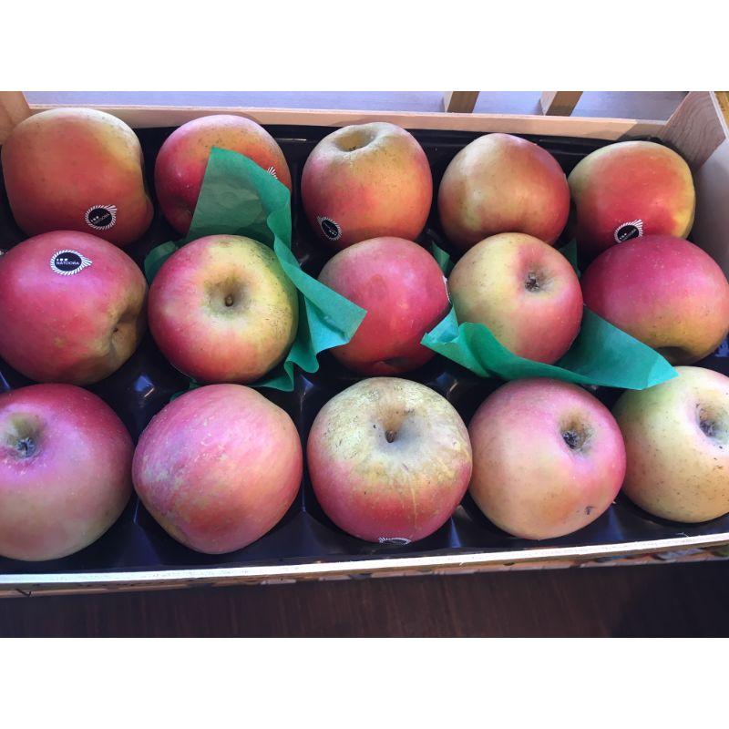 Apple - Fuji (French) pc