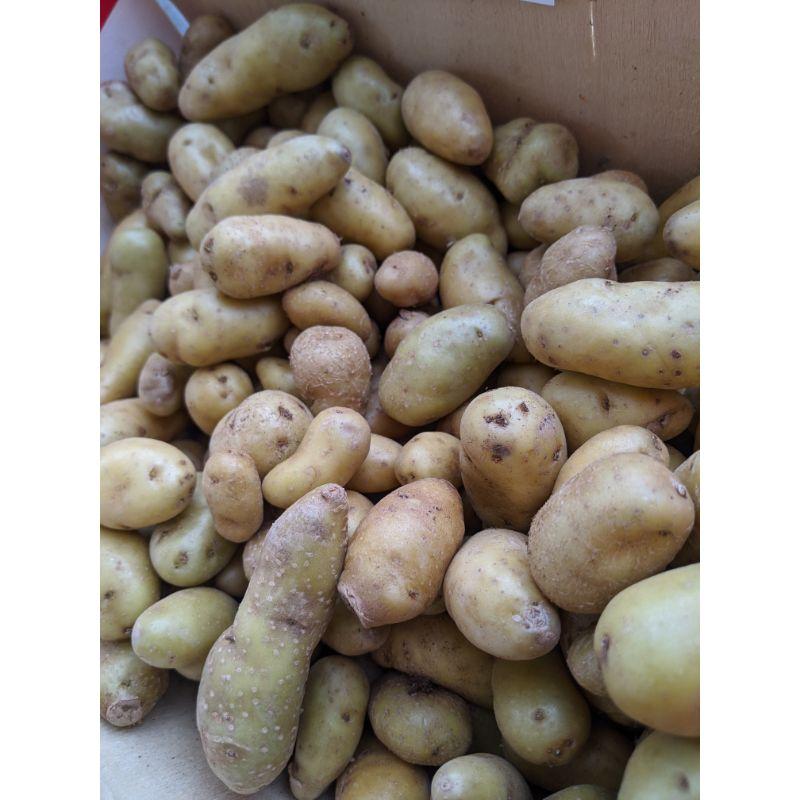 Potato - Ratte Fine 200g