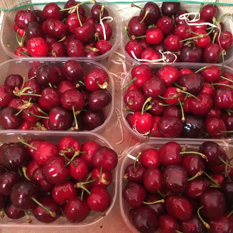 Cherries Royal red 250g