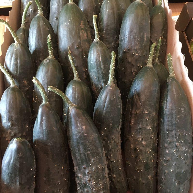 Cucumber pc