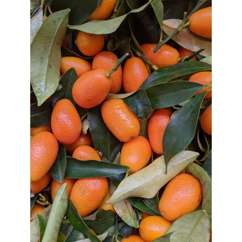 Kumquat 300g