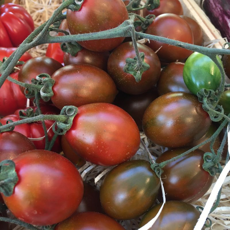 Tomato Zebrino 300g