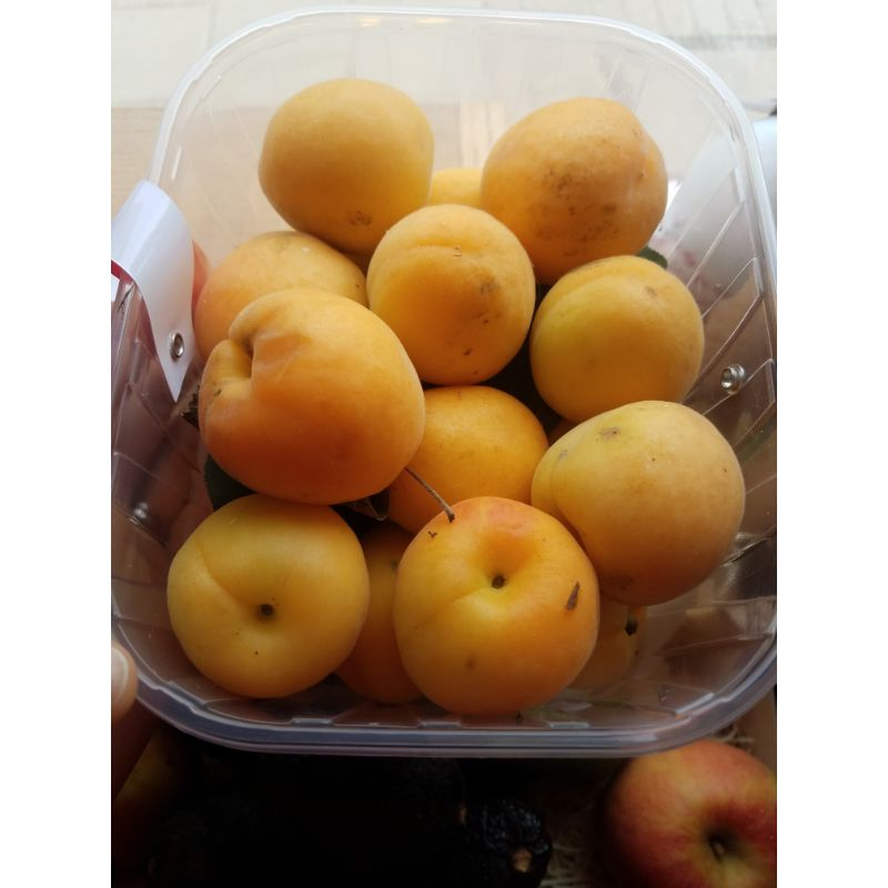 Apricots 300g