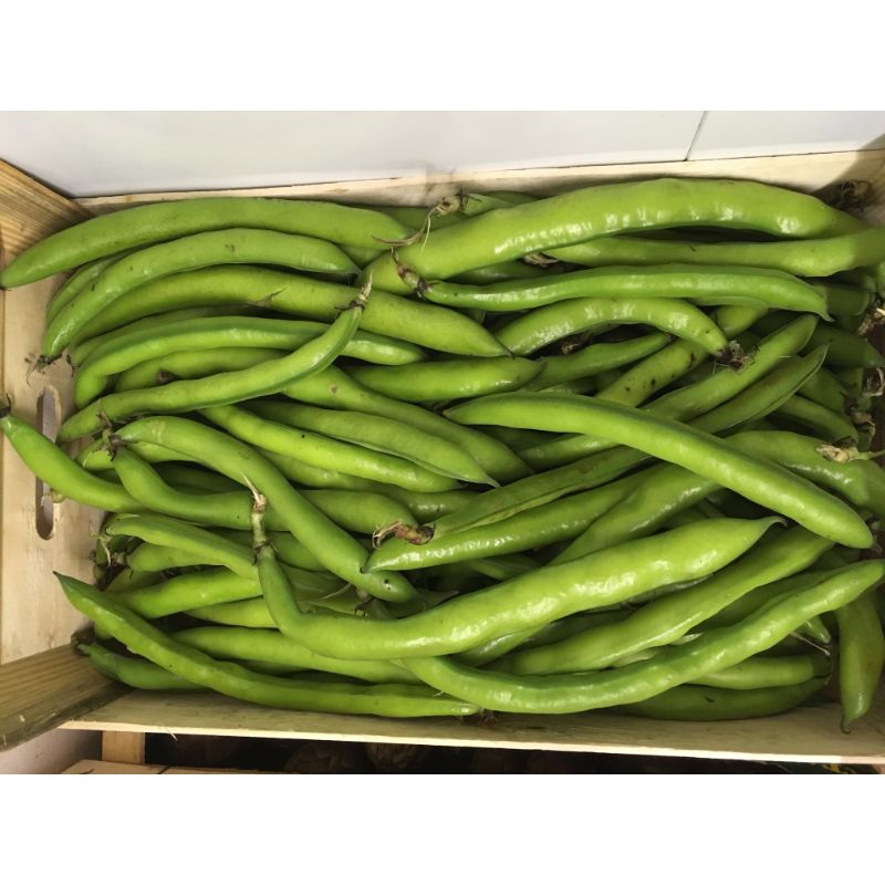 Broad beans 300g